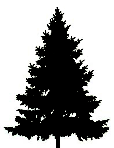 Pine Tree Clip Art Black And White - Cliparts.co