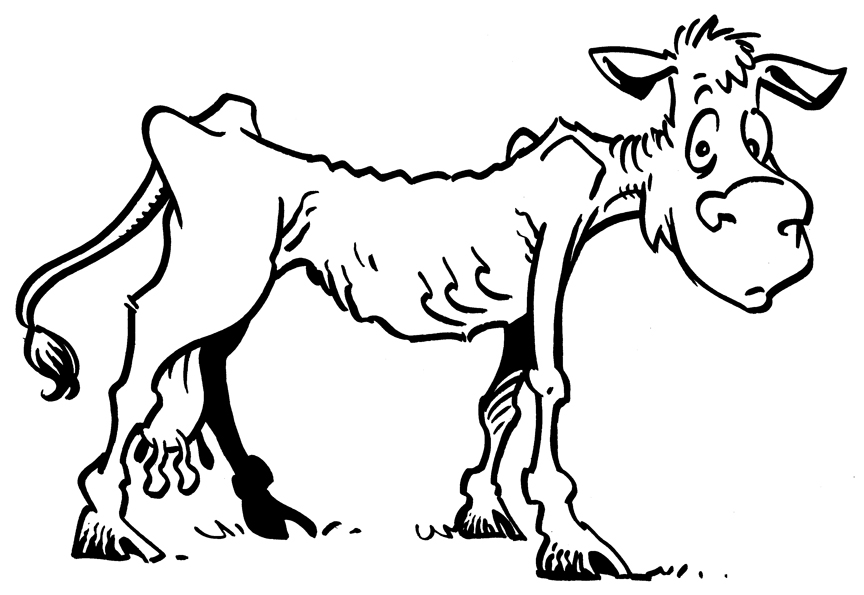 Practical Faith: Lean cows and laziness