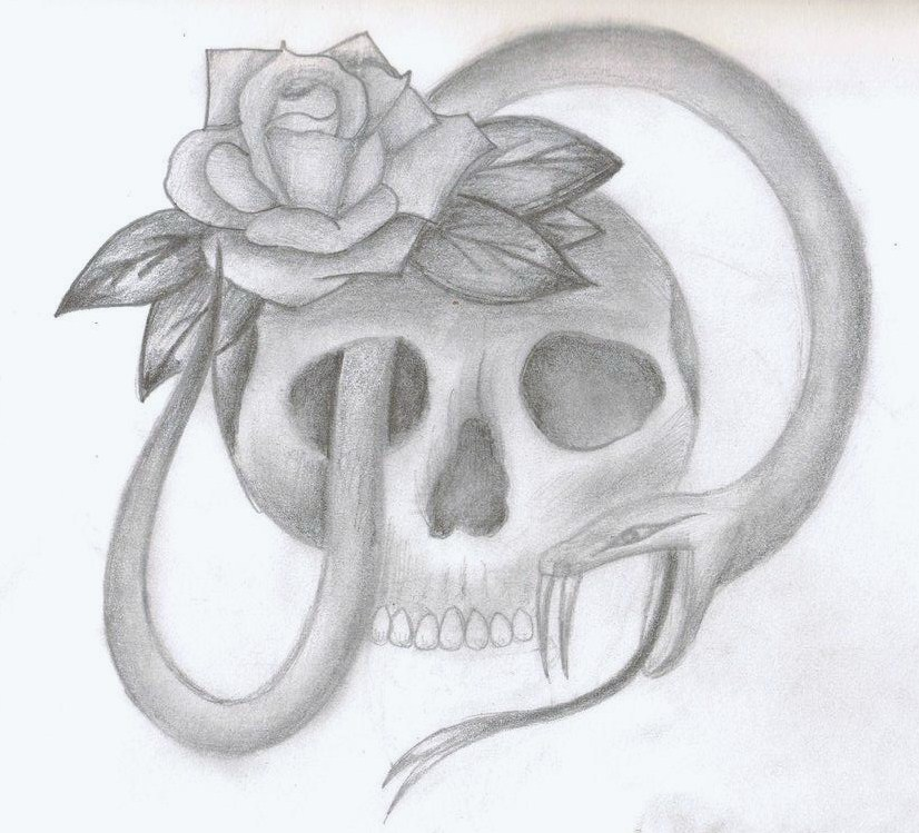 drawings of roses clipartsco