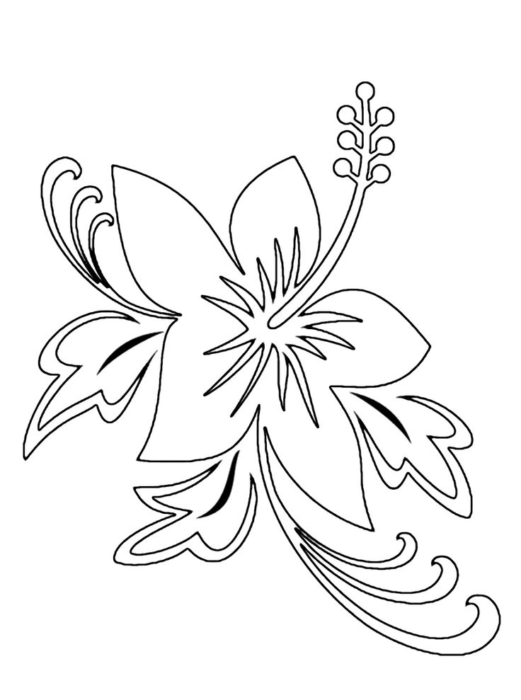 exotic flower coloring pages - tropical flower drawings