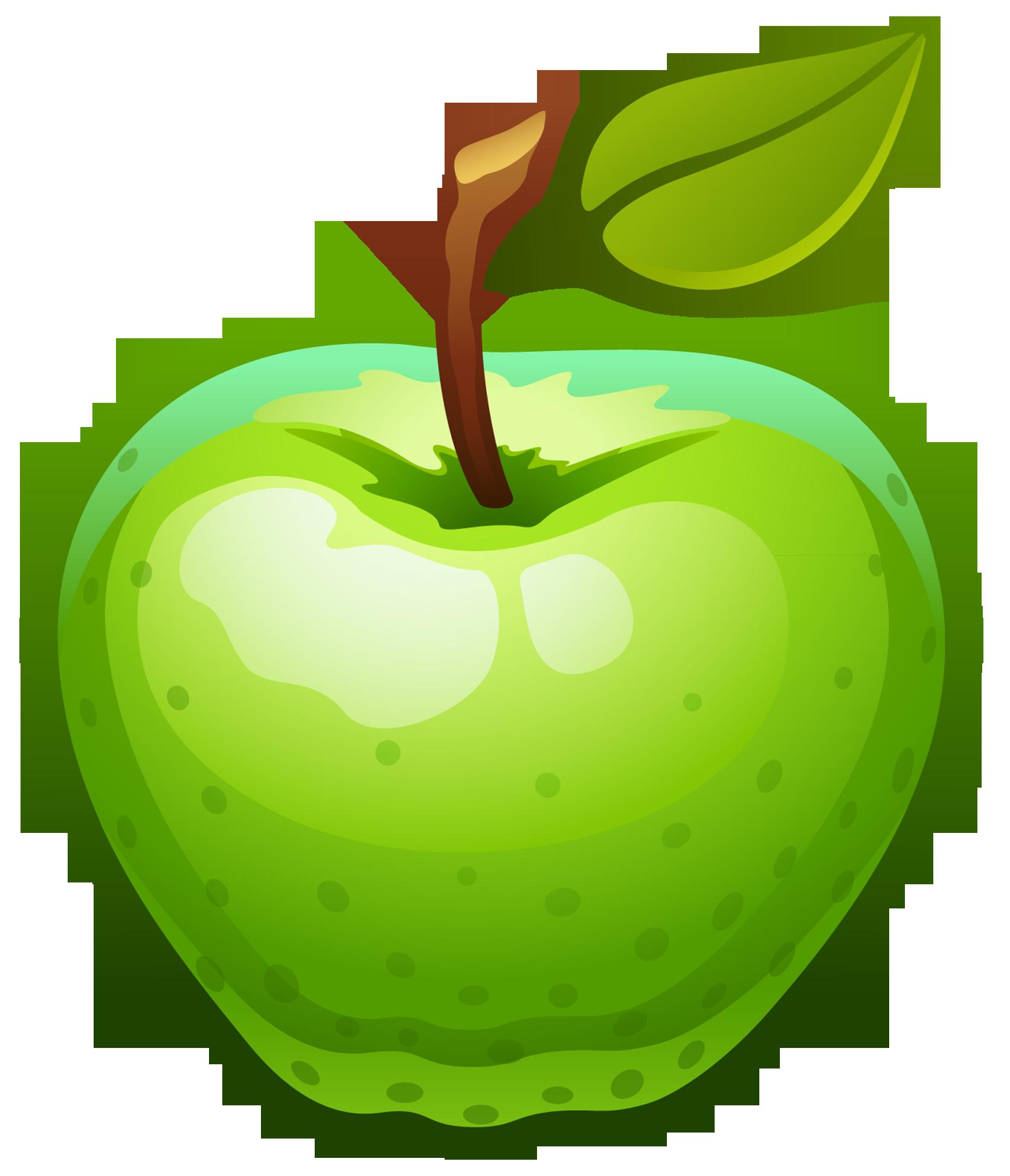 My favorite big mango 6