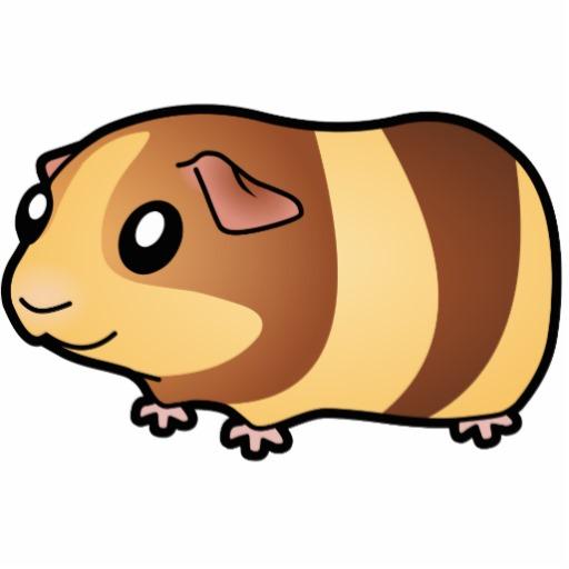 how to draw a cartoon guinea pig