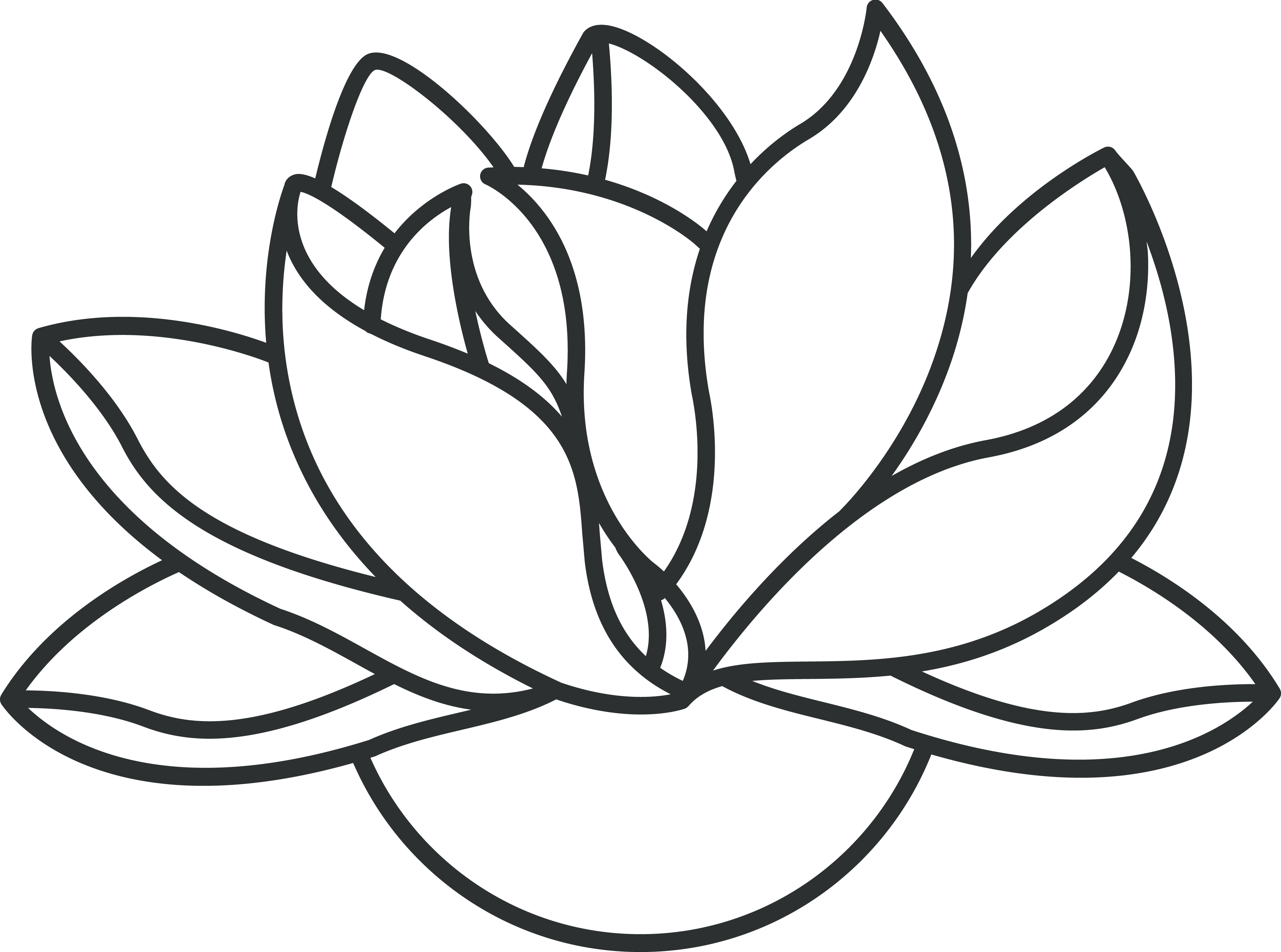 Lotus Flower Outline Clipartsco