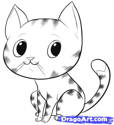 cute cat face drawing clipartsco