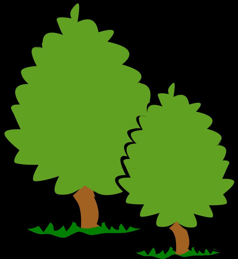 oak tree clip art images - photo #29