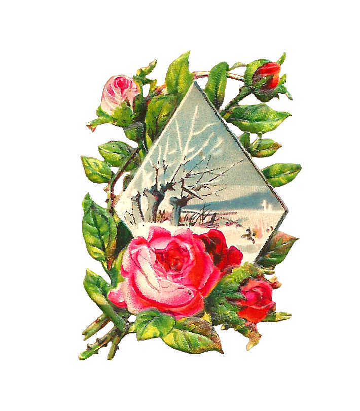 Antique Images: Free Flower Graphic: Pink Rose Clip Art with ...