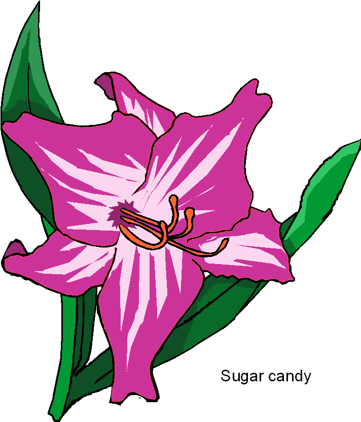 sugar-candy-flower-clipart.png