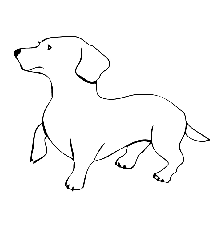 Dogs And Cats Drawings Outlines