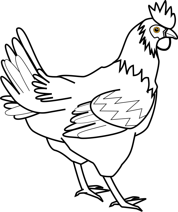 Line Drawing Chicken : Clip art of a chicken cliparts