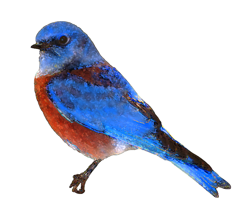 Bird Flying Clip Art - Cliparts.co