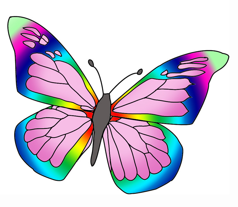 Beautiful butterfly images