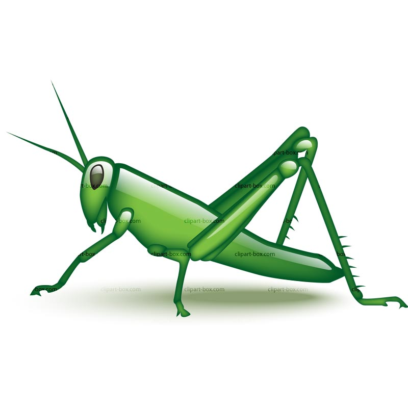Grasshopper Clipart Black And White | Clipart Panda - Free Clipart ...