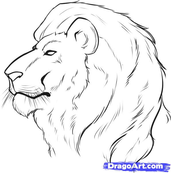 How to draw lion face easy