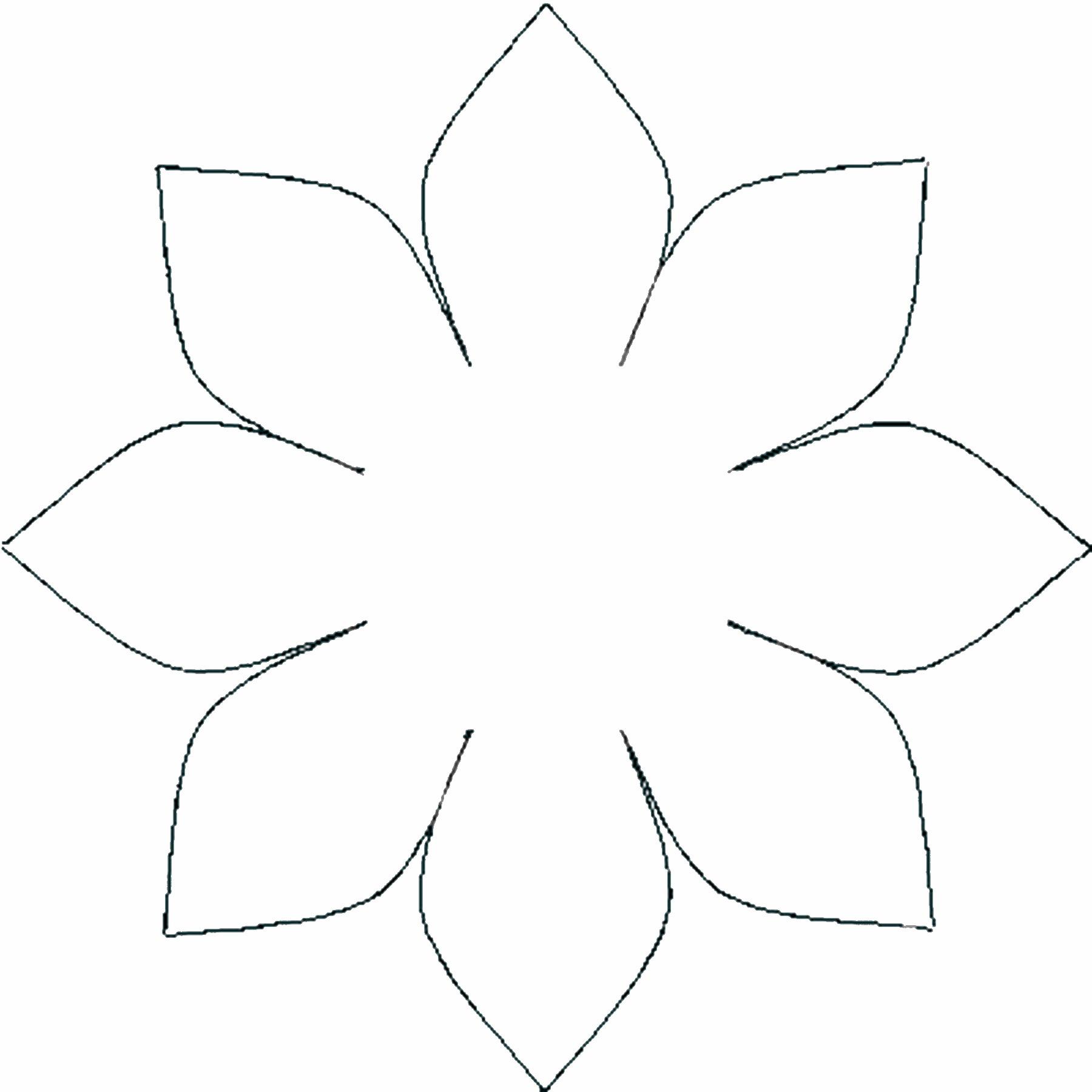 Daffodil Paper Flower Pattern Nurufunicaasl