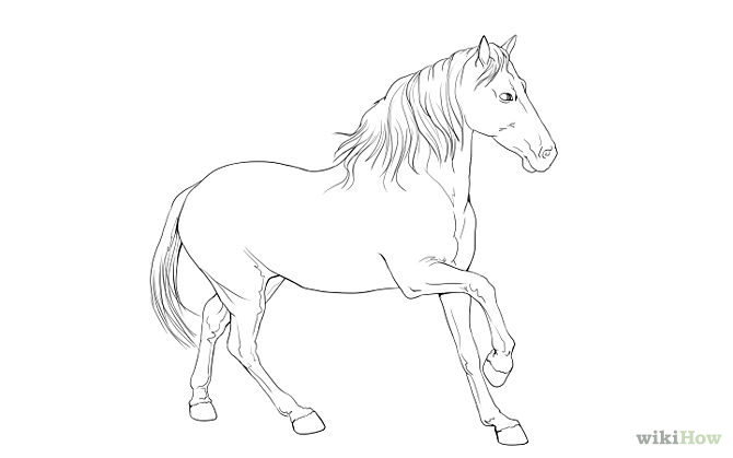 teach kids how to draw horses