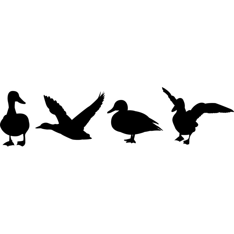 Duck Hunting Clipart