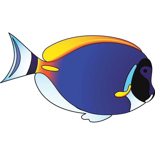 clipart picture of fish - photo #46