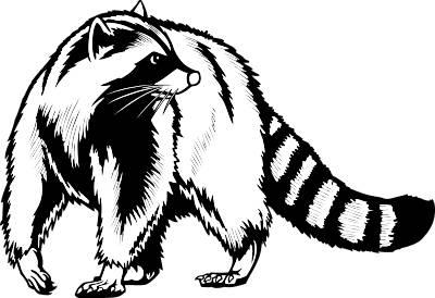 Raccoon Clip Art - Cliparts.co Raccoon Face Clip Art Black And White