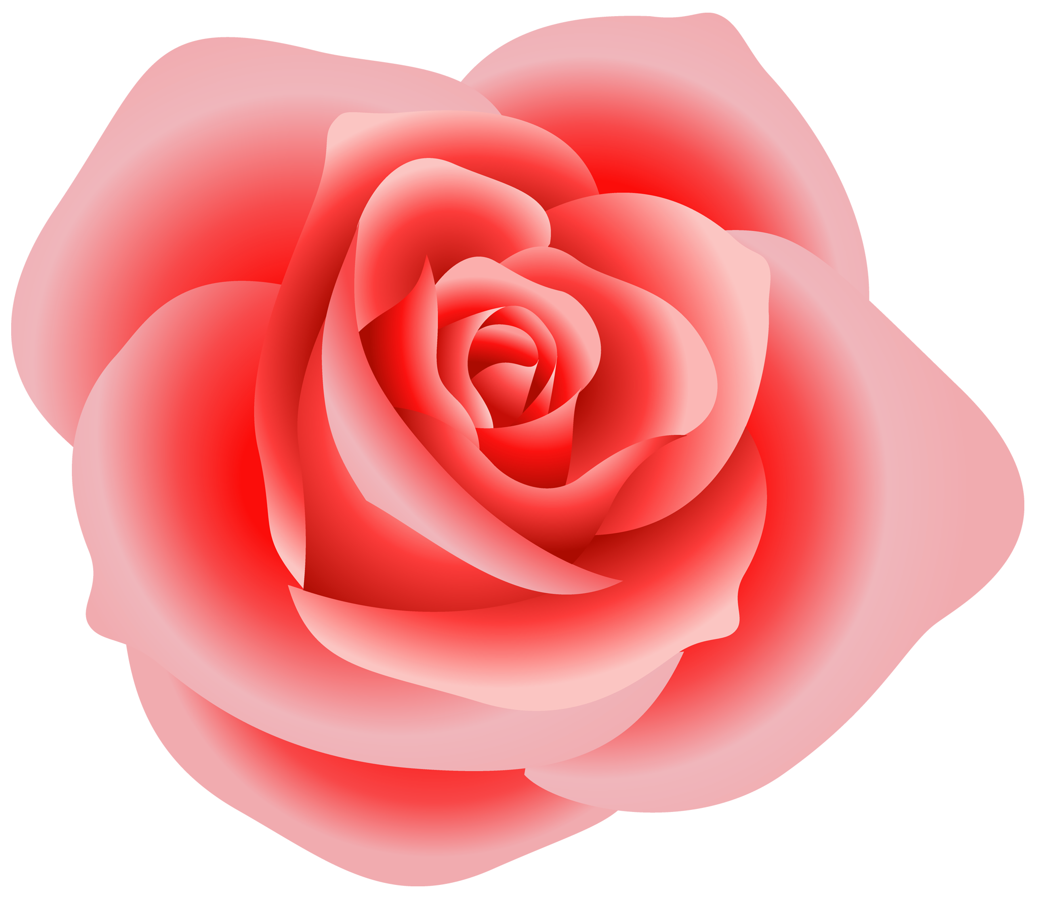 Free Rose Pictures - Cliparts.co