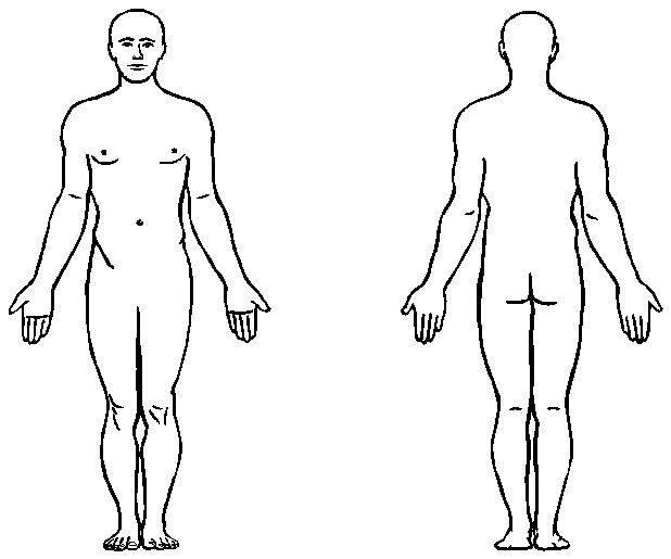 Human Body - ClipArt B...