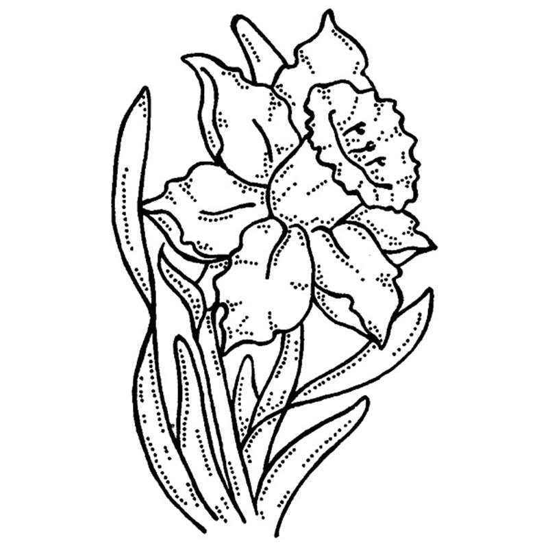 Line Drawing Daffodil : Daffodil images cliparts