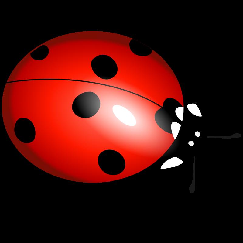 Clipart - ladybug, ladybirds, boružė