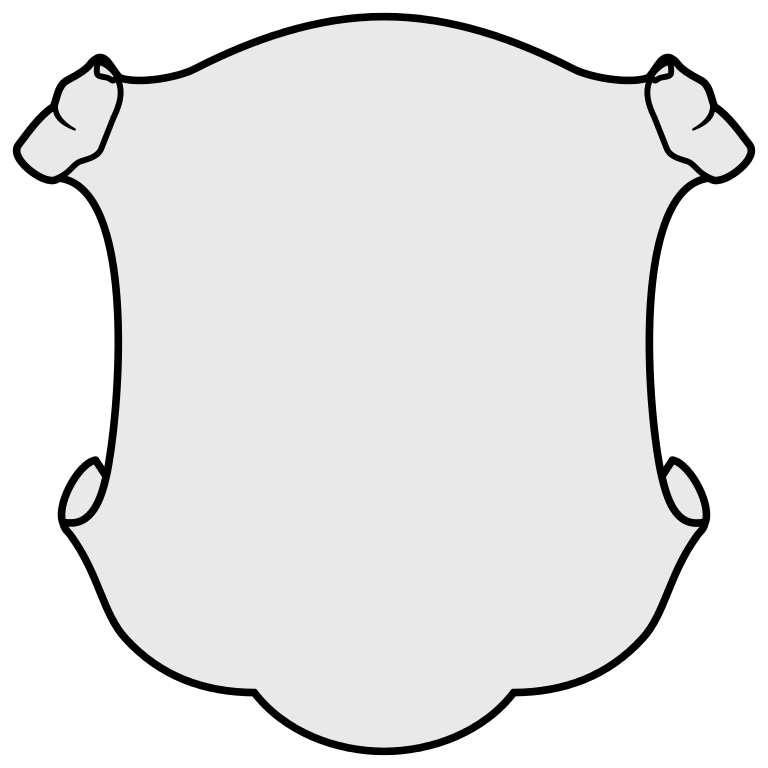 banner blank
