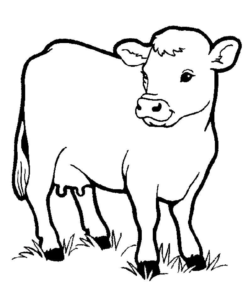 Download Little Cow Preschool Coloring Pages Farm Animals Or Print ...
