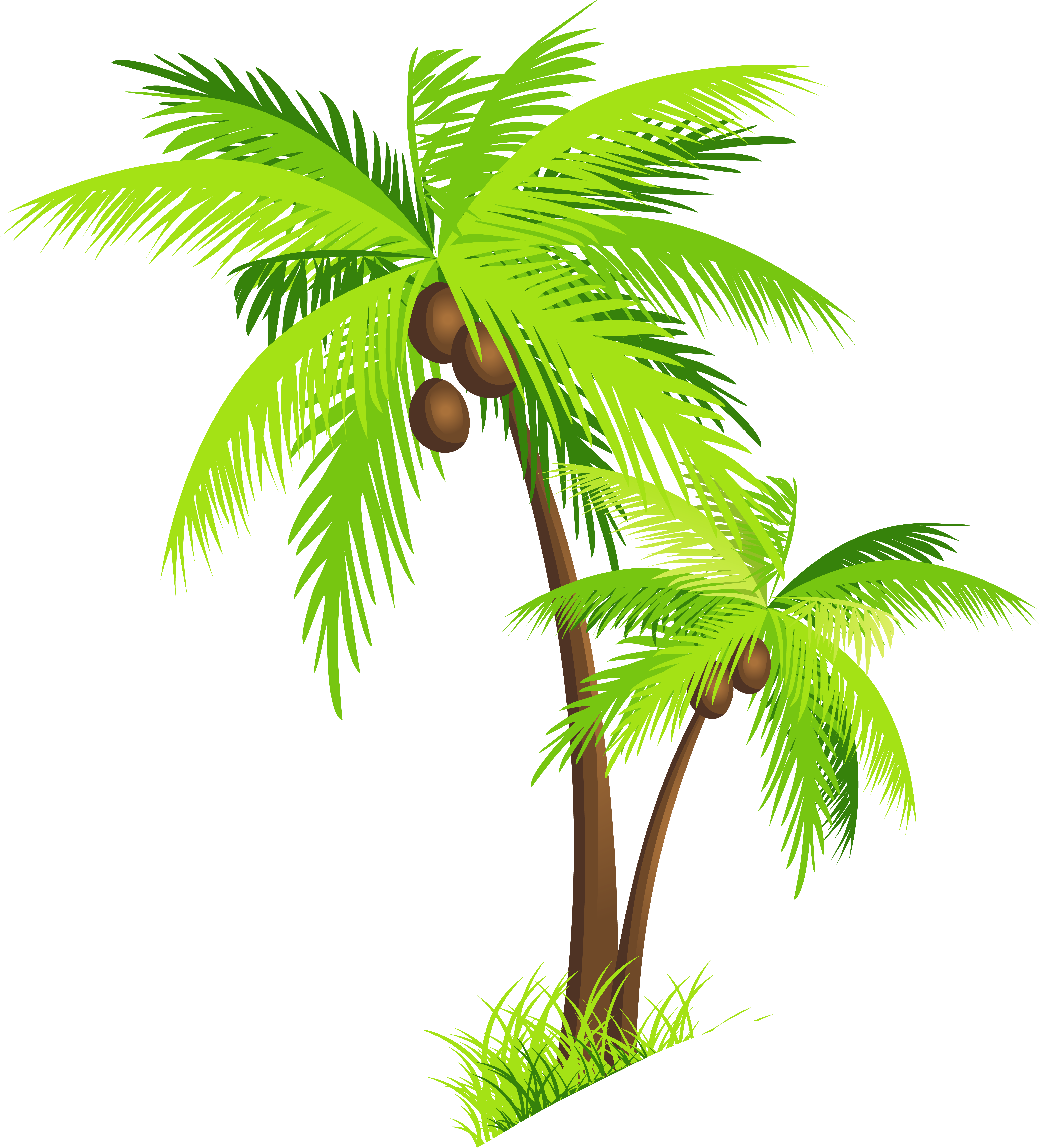 coconut tree logo png clipart best clipartsco