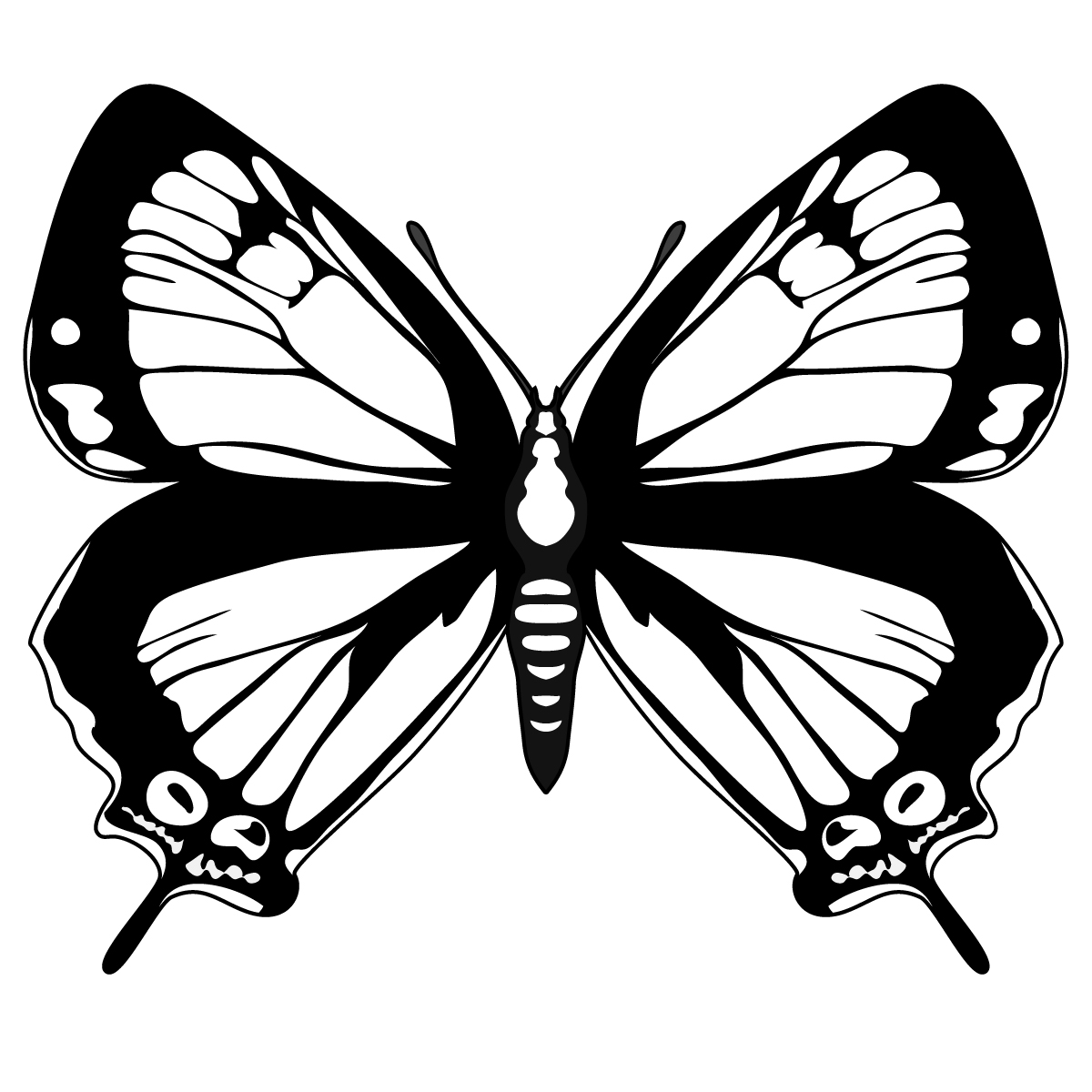 Butterfly Outline Template - Cliparts.co