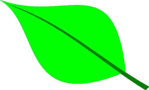 Green Leaf clip art - vector clip art online, royalty free ...