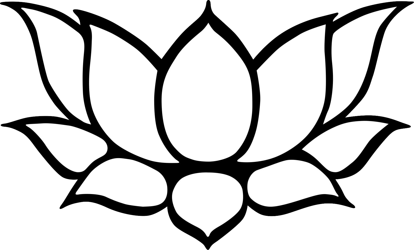 Line Art Lotus Flower : Lotus flower line drawing cliparts