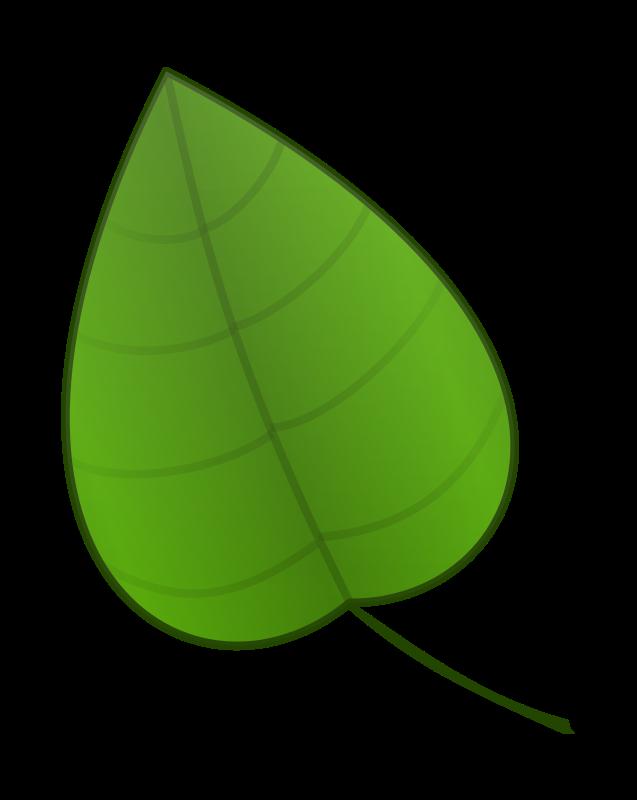 palm leaf clip art cliparts co palm leaf clip art traceable palm leaf clip art no background