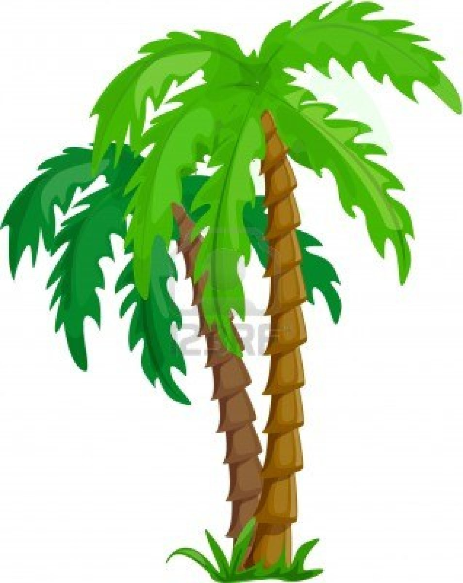 cartoon palm tree clip art cliparts co palm tree leaves clipart Palm Tree Leaves Watercolor