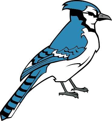 blue jay clipart rh worldartsme com baby blue jay clipart toronto blue jay clipart