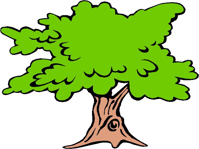 free clipart decision tree - photo #42