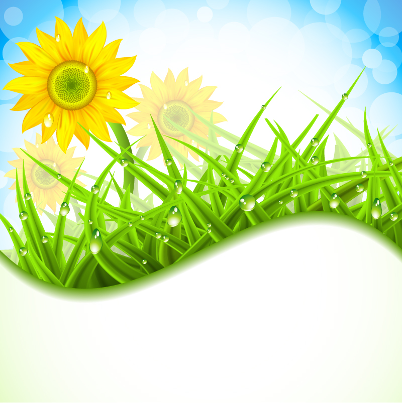 Spring Flower With Green Background Vector 02 Free Download: Wheat Vector Free