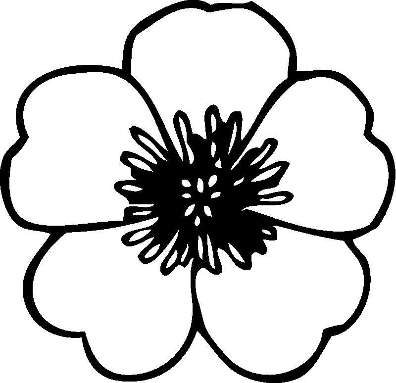 Line Drawing Of Flowers Clipart : Lotus flower line drawing cliparts