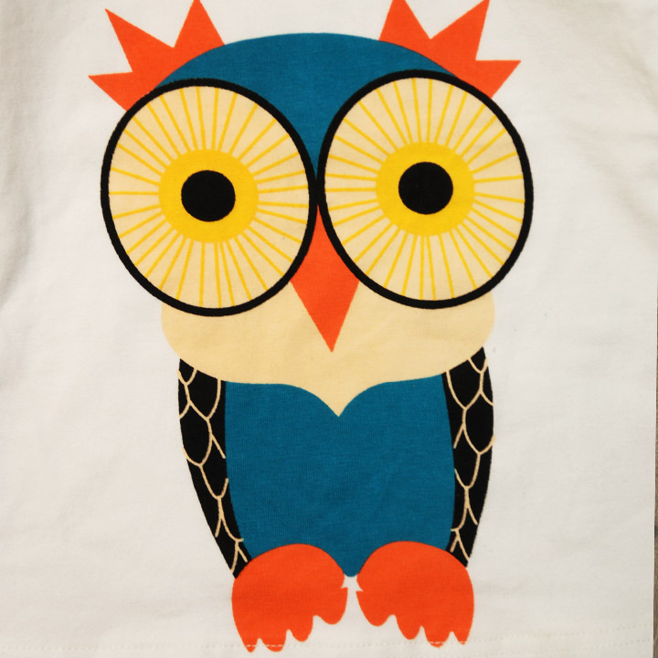 Cartoon Owl Pictures For Kids
