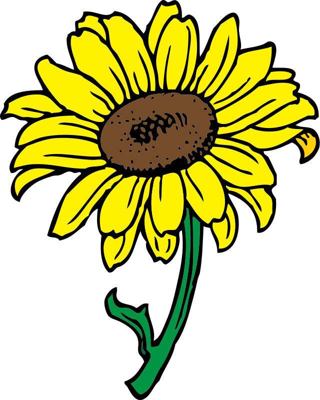 Sunflower Clipart Royalty Free Flower Pictures | Clipart Pictures Org