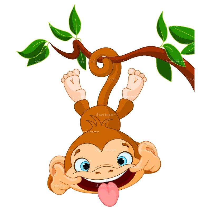 Monkey images clip art