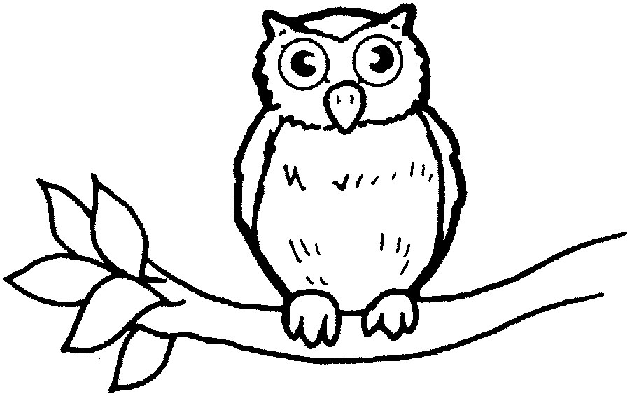 Owl Clipart Image Cartoon Sitting On A Tree Branch At Night ...