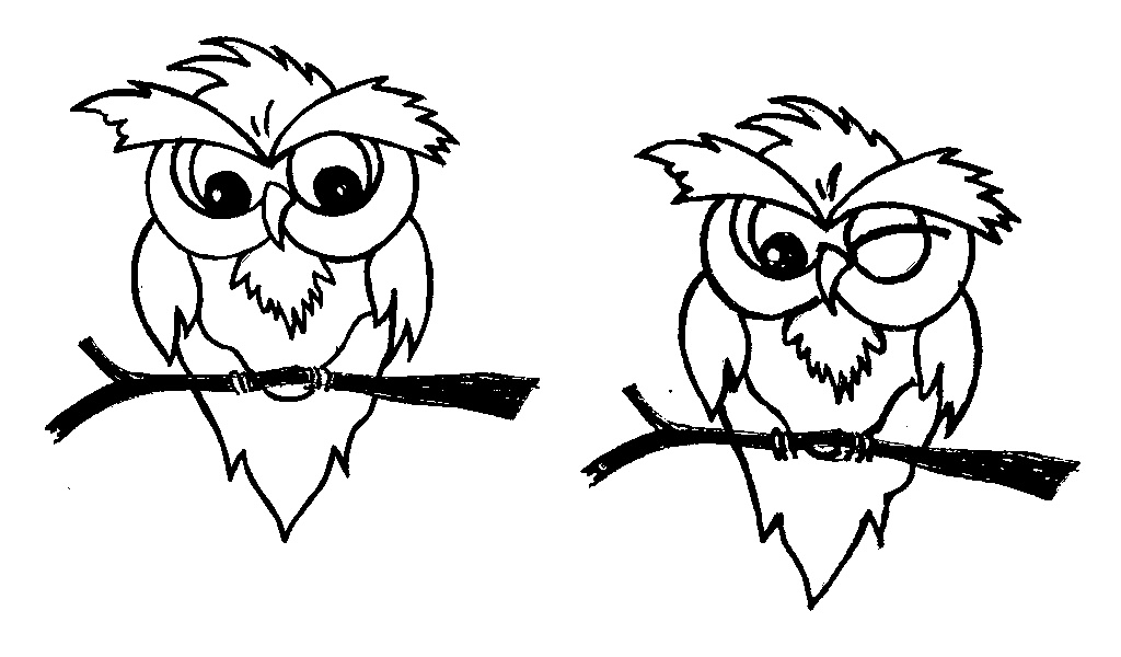 Cartoon Owl Face