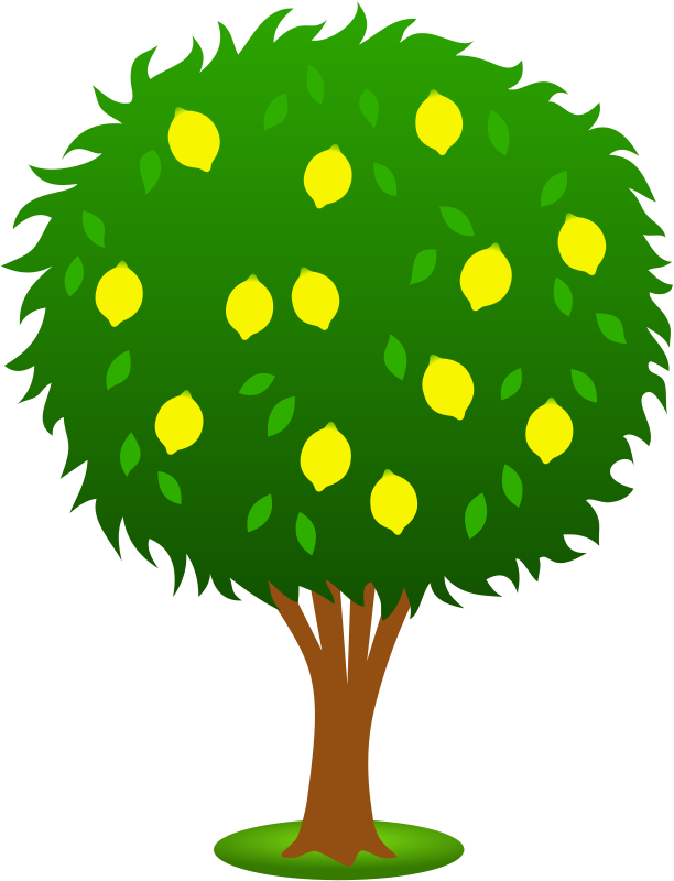 Free to Use & Public Domain Plants Clip Art - Page 14