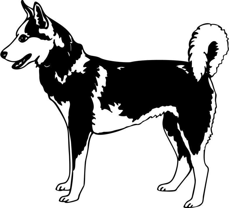 free clipart husky dog - photo #24