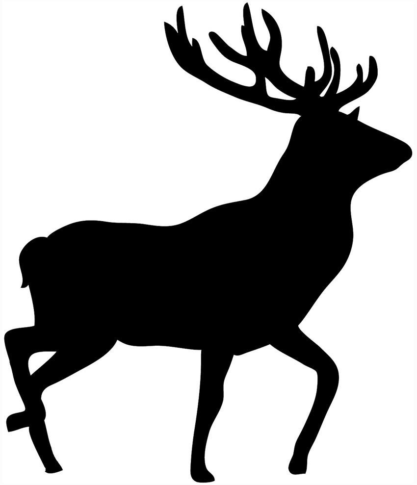 cow elk clipart - photo #37