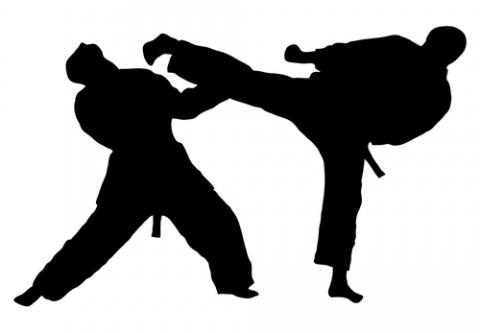 New Jersey Martial Arts | Many Other Benefits | Taekwondo Fair ...