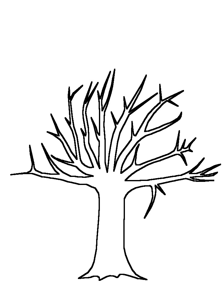 how to draw a simple tree with branches