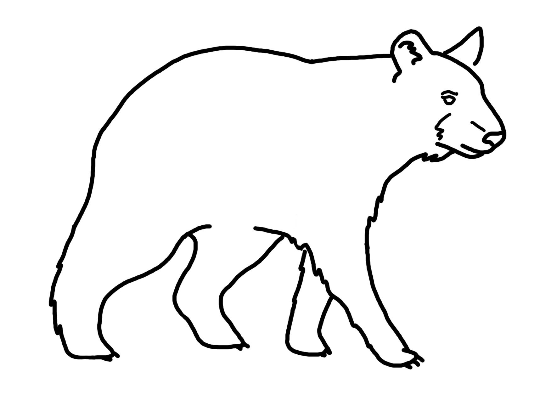 Line Drawing Bear : Bear drawing cliparts