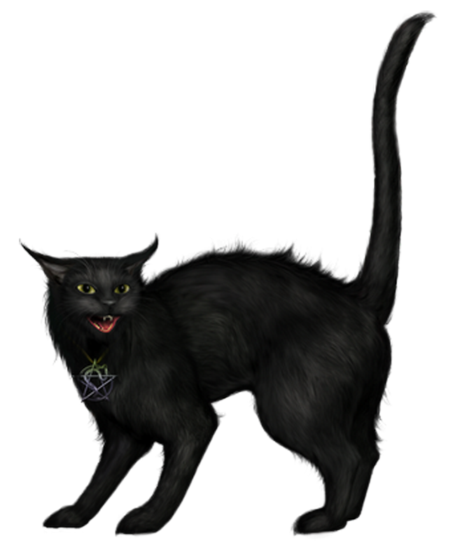 Cute Cat Gif Cartoon Render